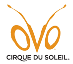 """Cirque du Soleil brings """"OVO""""; to North Texas, tickets now on sale for Cirque Club Members"""